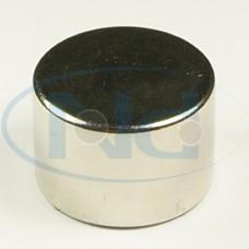 22x15 mm N42 Ímã Neodímio Pastilha ou Disco